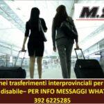 Mobilità: nuova sentenza riconosce la precedenza nei trasferimenti interprovinciali per assistenza al genitore disabile